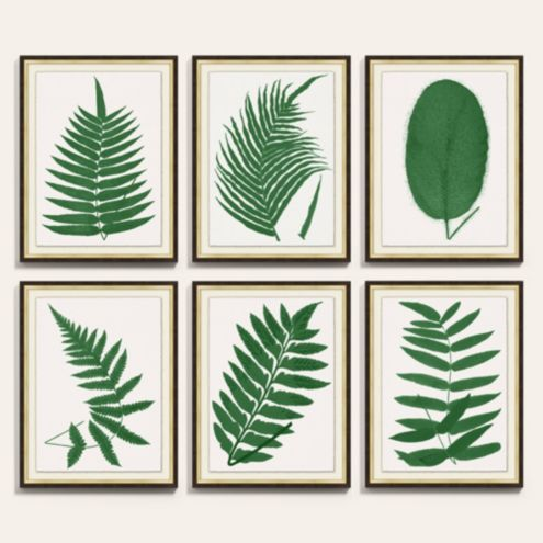 Fern Leaf Green Botanical Art Print Series