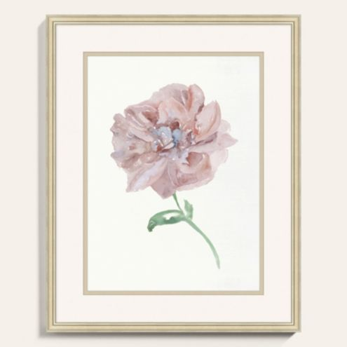 Fragile Petals Framed Art Print