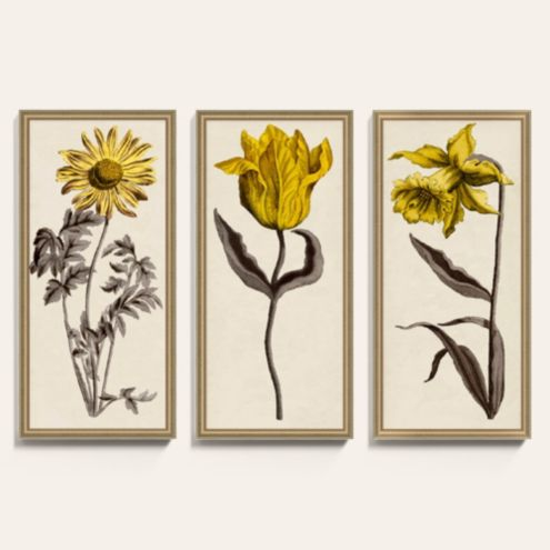 Sepia Florals I Yellow Framed Art Print