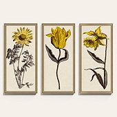 Sepia Florals Art