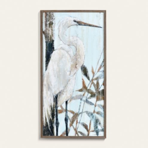 Everglade Heron Framed Art Print