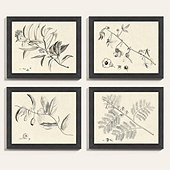 Botanical Sketch Art