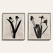 Iris Silo Art