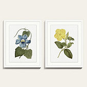 Floral Pops Art