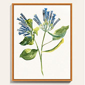 Watercolor Wildflower Art