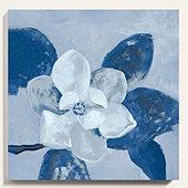 Grandiflora Art - Cornflower