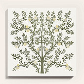 Flourishing Tree Stretched Canvas