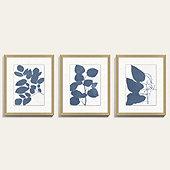 Cornflower Flora Art