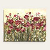 Field of Poppies Art